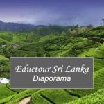 Voyage-Pro-Sri-Lanka-01