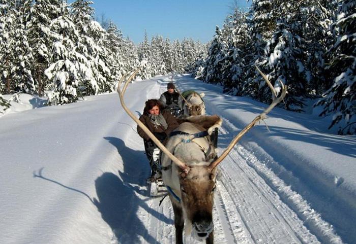 Cliquez sur la photo pour accéder à la fiche technique du Club Marmara Ivalo en Laponie